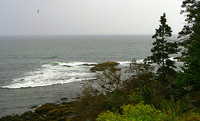 Stormy weather, east coast of Mount Desert